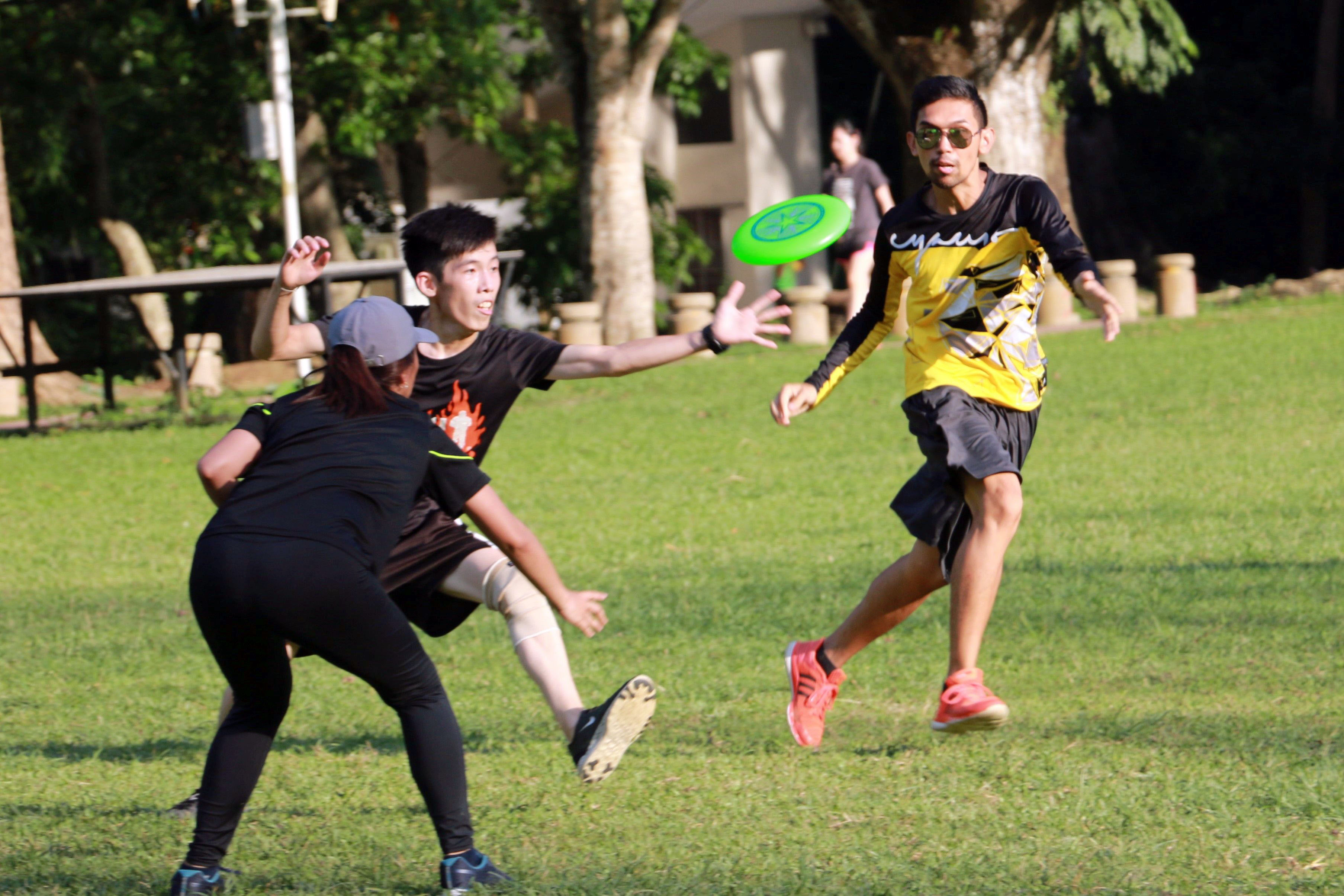 Ultimate frisbee, a universal recreational activity